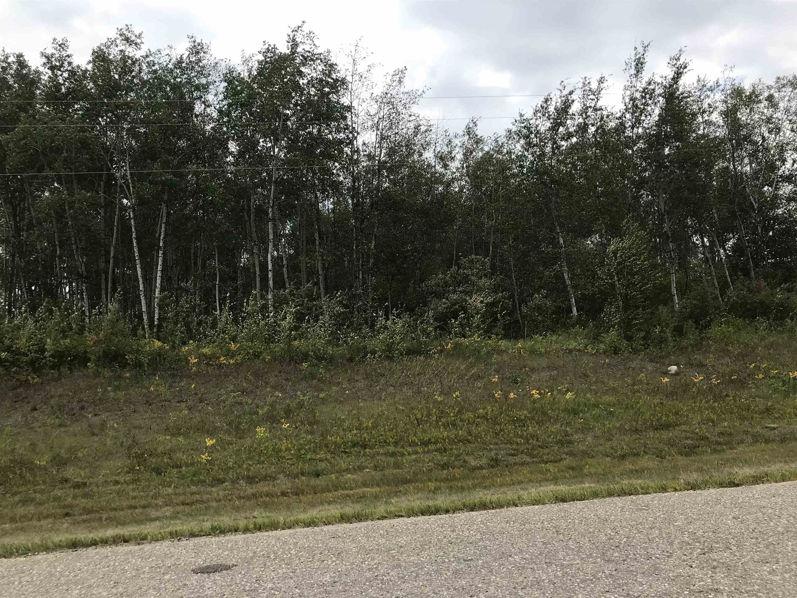 Range Road 1 Tounship 62, Rural Bonnyville M.d., Alberta  T0A 0T0 - Photo 4 - E4121750