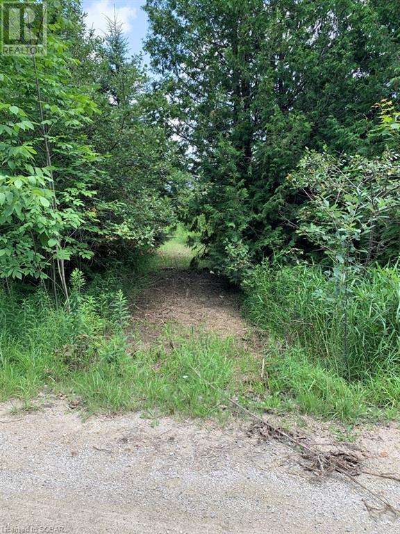 Pt Lt 69-70 35 Sideroad, Grey Highlands, Ontario  N0C 1E0 - Photo 17 - 40150281
