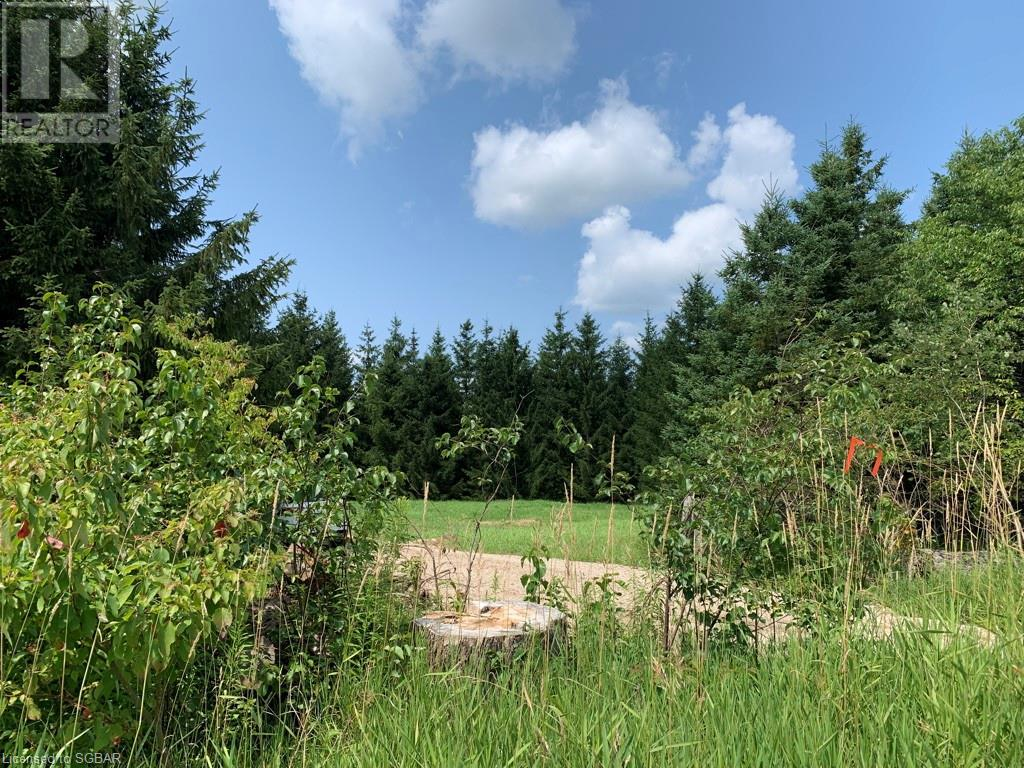 Pt Lt 69-70 35 Sideroad, Grey Highlands, Ontario  N0C 1E0 - Photo 3 - 40150281