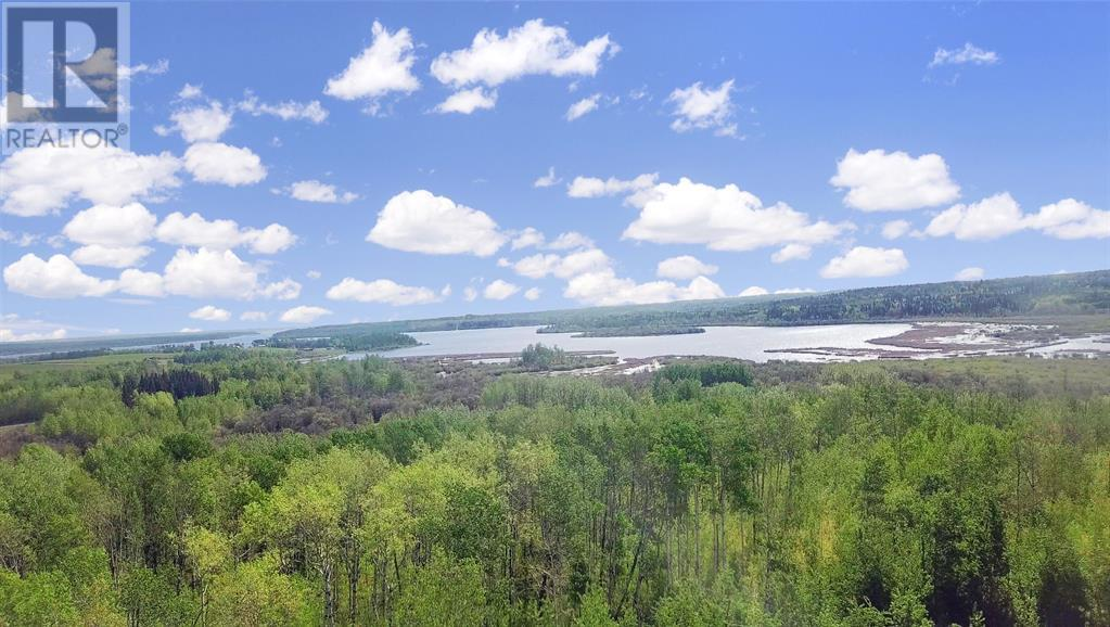 Rr 251 (Young's Point Road), M.d. Of, Alberta  T0H 0Y0 - Photo 10 - A1002421