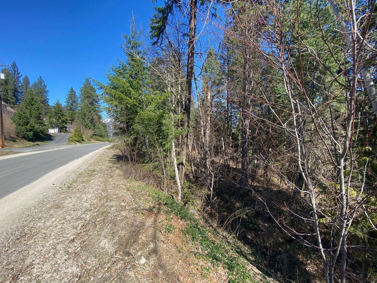 Lot L View Ridge Road, Nelson, British Columbia  V0G 2G0 - Photo 13 - 2460797