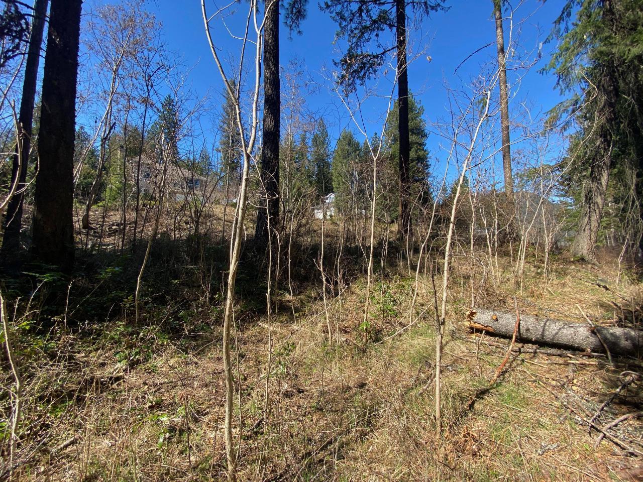 Lot L View Ridge Road, Nelson, British Columbia  V0G 2G0 - Photo 15 - 2460797