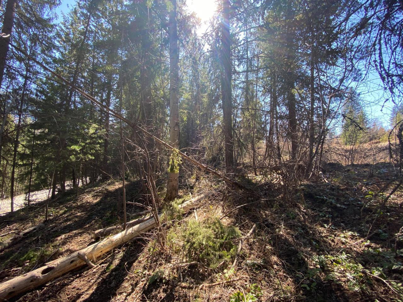 Lot L View Ridge Road, Nelson, British Columbia  V0G 2G0 - Photo 19 - 2460797