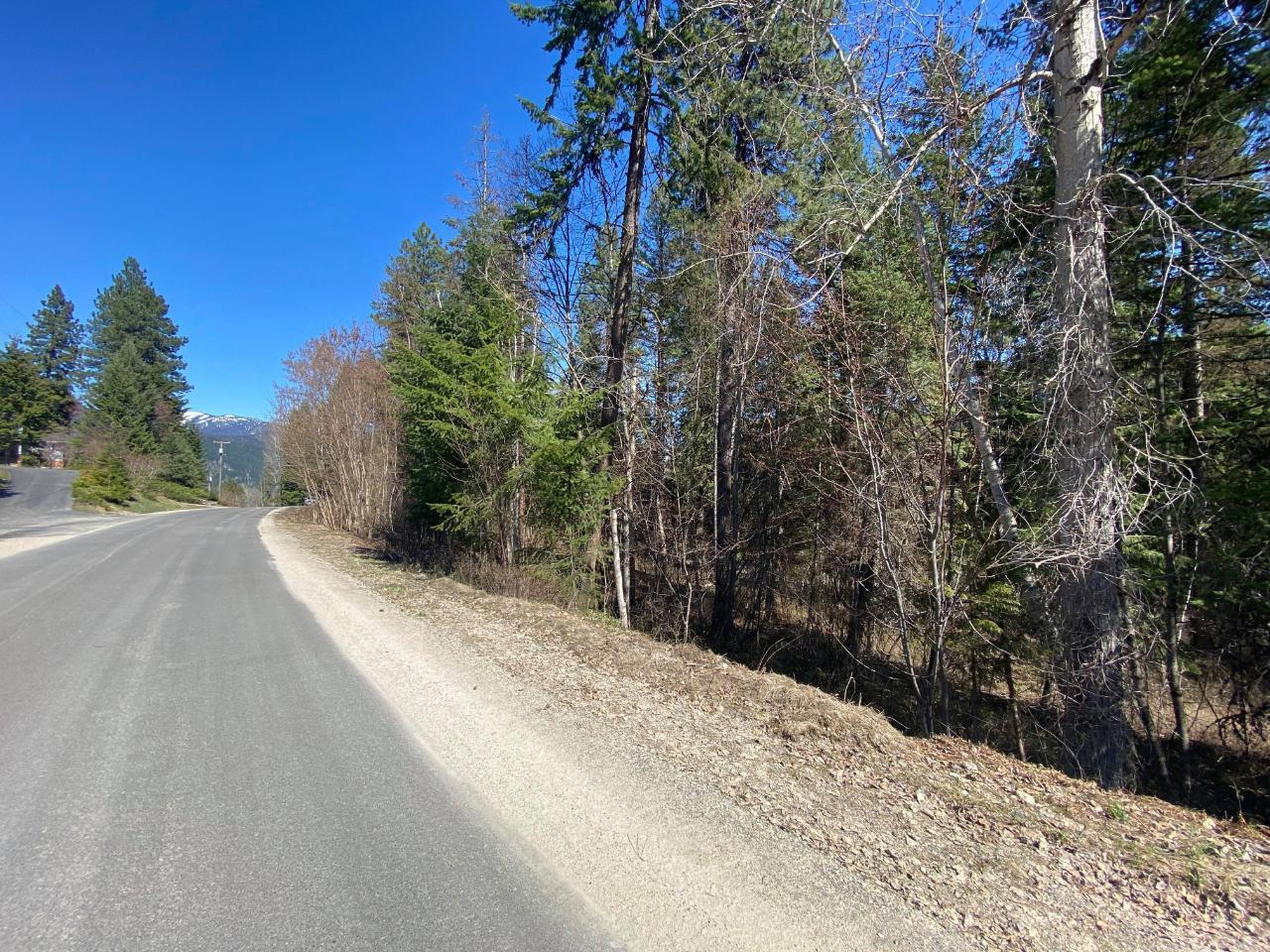 Lot L View Ridge Road, Nelson, British Columbia  V0G 2G0 - Photo 21 - 2460797