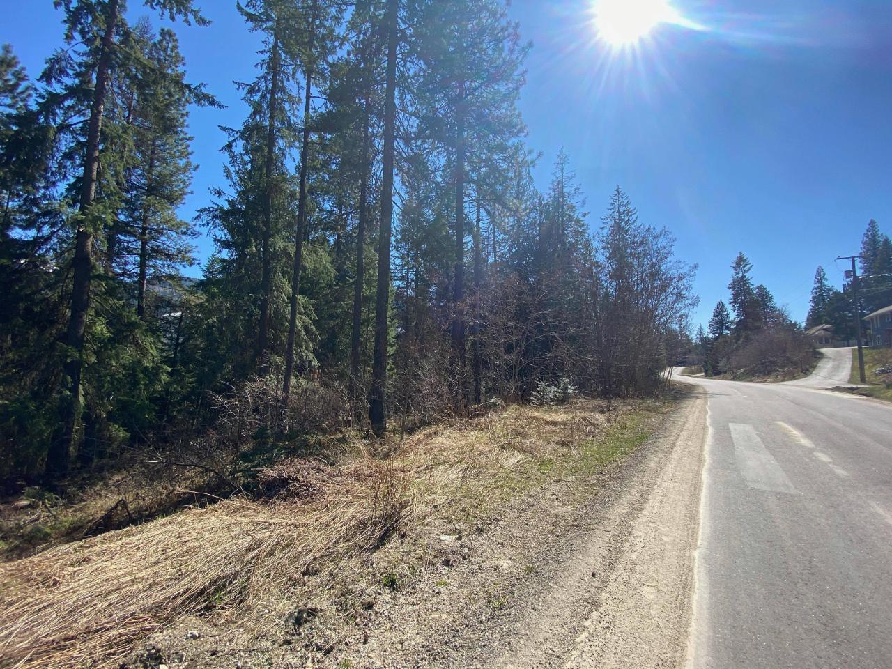 Lot L View Ridge Road, Nelson, British Columbia  V0G 2G0 - Photo 8 - 2460797