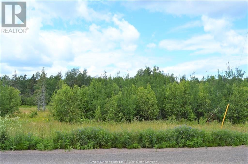 Lot 6 Route 945, Haute Aboujagane, New Brunswick  E4P 5T6 - Photo 1 - M136618