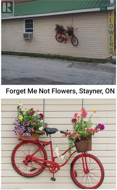 7318 26 Highway, Stayner, Ontario  L0M 1S0 - Photo 9 - 40143595