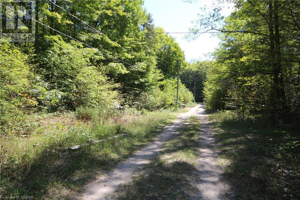 2 Zhingos Lane, Christian Island, Ontario  L9M 0A9 - Photo 23 - 40159848