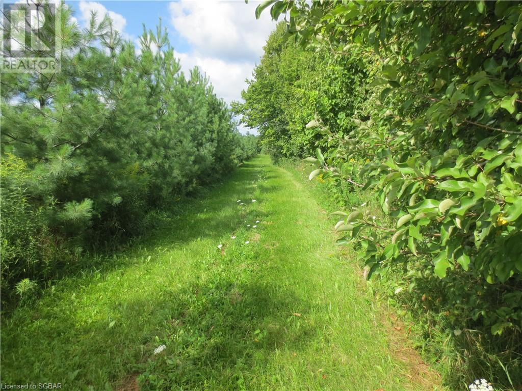 179 Slabtown Road, The Blue Mountains, Ontario  N0H 1J0 - Photo 33 - 40144833