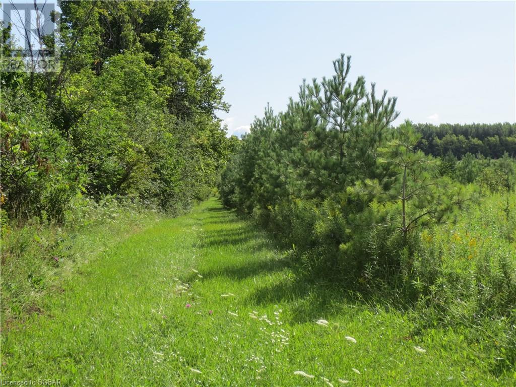179 Slabtown Road, The Blue Mountains, Ontario  N0H 1J0 - Photo 32 - 40144833