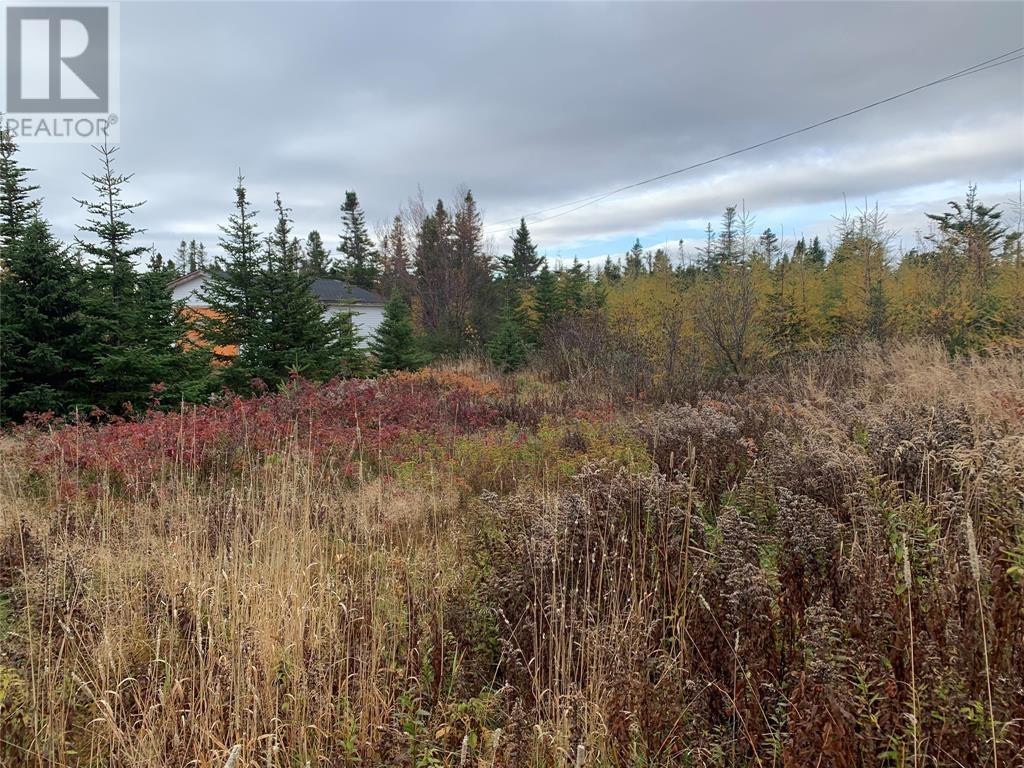 3 Station Road, Ochre Pit Cove, Newfoundland & Labrador  A0A 4J0 - Photo 4 - 1236746