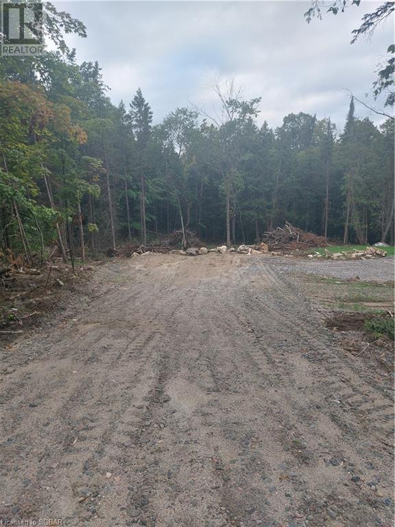 1393 Paynes Road, Haliburton, Ontario  K0L 2Y0 - Photo 1 - 40161651