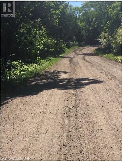 1393 Paynes Road, Haliburton, Ontario  K0L 2Y0 - Photo 5 - 40161651