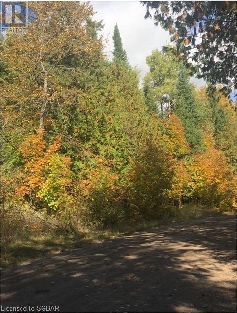 1393 Paynes Road, Haliburton, Ontario  K0L 2Y0 - Photo 7 - 40161651