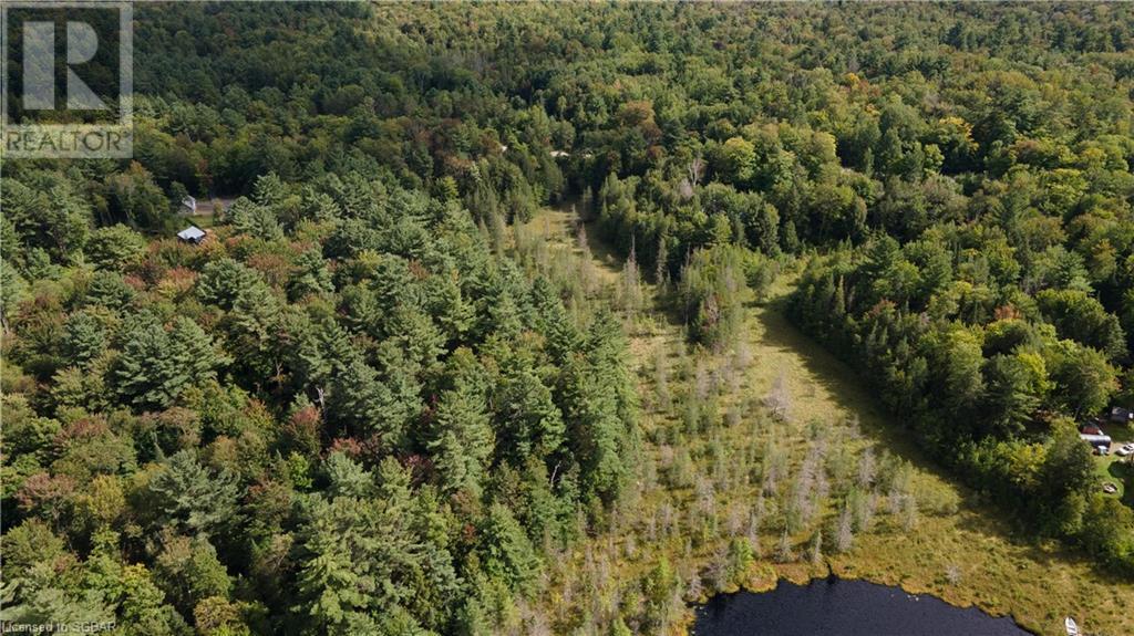 1156 Camel Lake Road, Muskoka Lakes, Ontario  P1L 1X4 - Photo 2 - 40162496