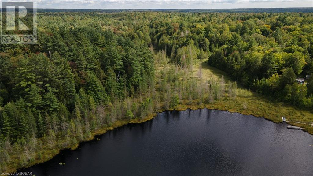 1156 Camel Lake Road, Muskoka Lakes, Ontario  P1L 1X4 - Photo 6 - 40162496