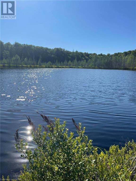 1156 Camel Lake Road, Muskoka Lakes, Ontario  P1L 1X4 - Photo 8 - 40162496