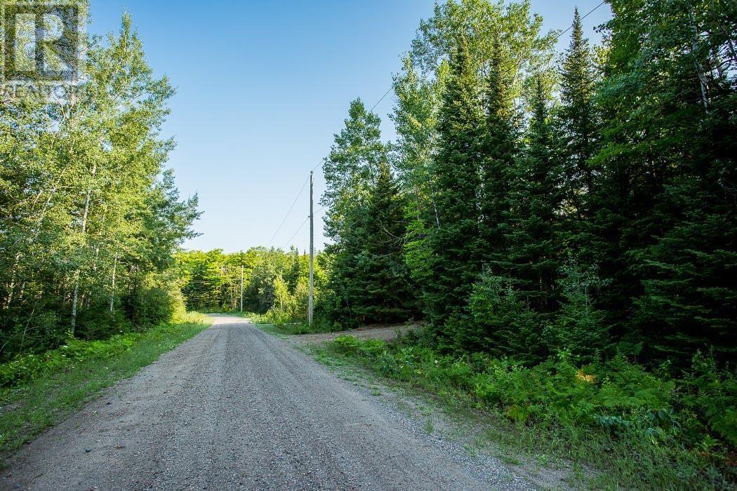 Lot 25 Richmond Bay Rd, Hilton Township, St. Joseph Island, Ontario  P0R 1G0 - Photo 35 - SM133143