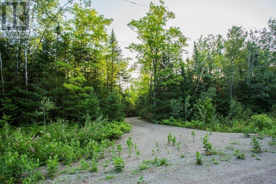 Lot 32 Richmond Bay Rd, Hilton Township, St. Joseph Island, Ontario  P0R 1G0 - Photo 10 - SM133150