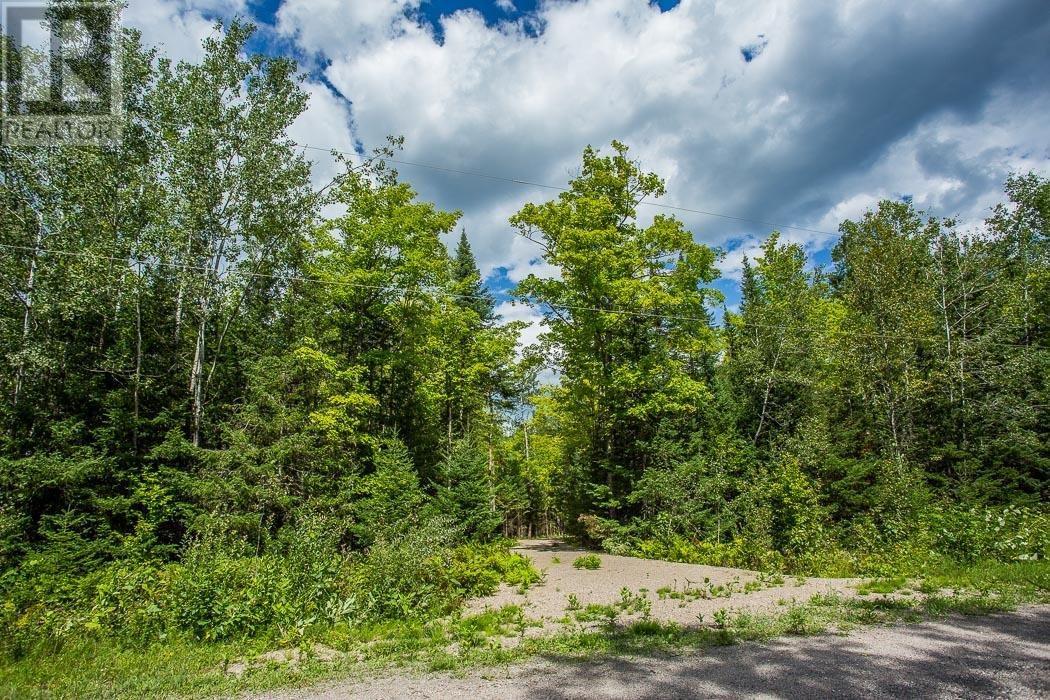 Lot 32 Richmond Bay Rd, Hilton Township, St. Joseph Island, Ontario  P0R 1G0 - Photo 3 - SM133150