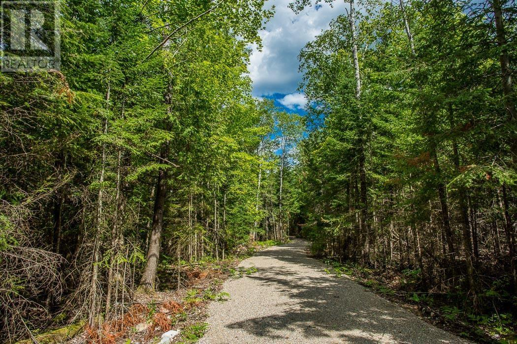 Lot 32 Richmond Bay Rd, Hilton Township, St. Joseph Island, Ontario  P0R 1G0 - Photo 4 - SM133150