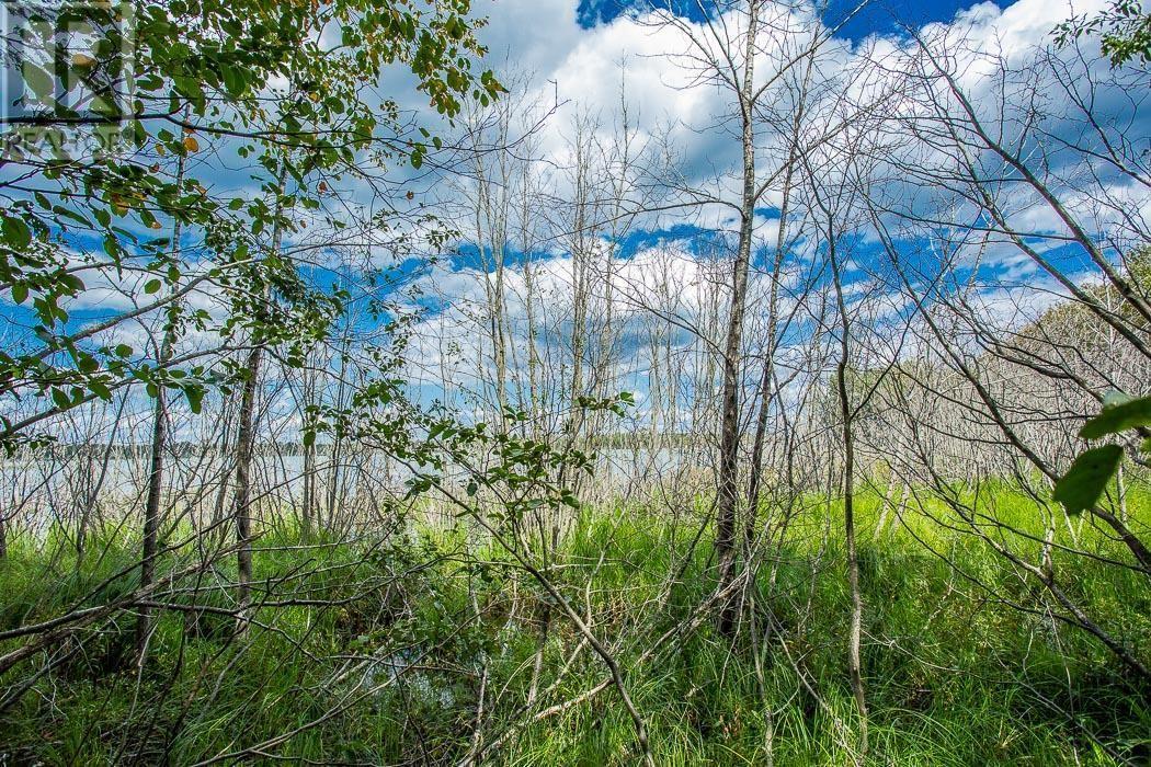 Lot 32 Richmond Bay Rd, Hilton Township, St. Joseph Island, Ontario  P0R 1G0 - Photo 9 - SM133150