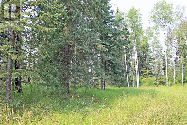 5 Ridgeland Road, Rural Clearwater County, Alberta  T4T 2A4 - Photo 2 - CA0158921
