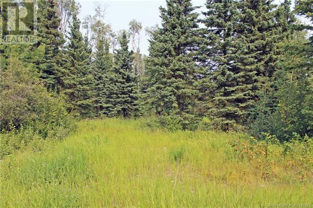 4 Forest Close, Rural Clearwater County, Alberta  T4T 2A4 - Photo 3 - CA0158923