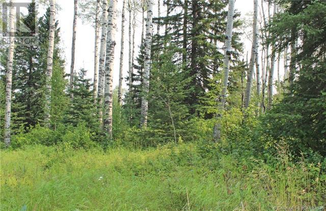 5 Sandhills Drive, Rural Clearwater County, Alberta  T4T 2A4 - Photo 2 - CA0158926