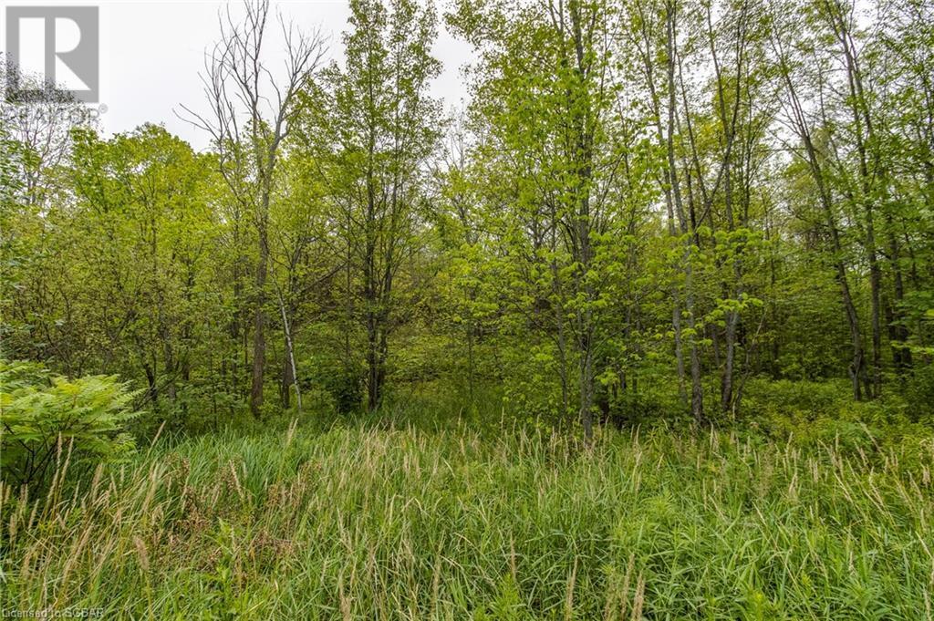 1354 Honey Harbour Road, Port Severn, Ontario  P0E 1E0 - Photo 39 - 40144560