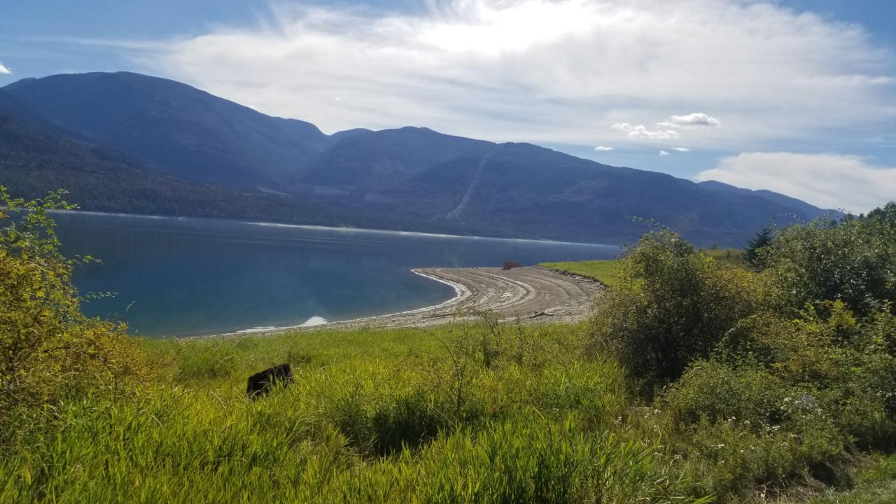 Lot 2 Lower Inonoaklin Rd, West Arrow Park To Edgewood, British Columbia  V0G 1J0 - Photo 3 - 2460947