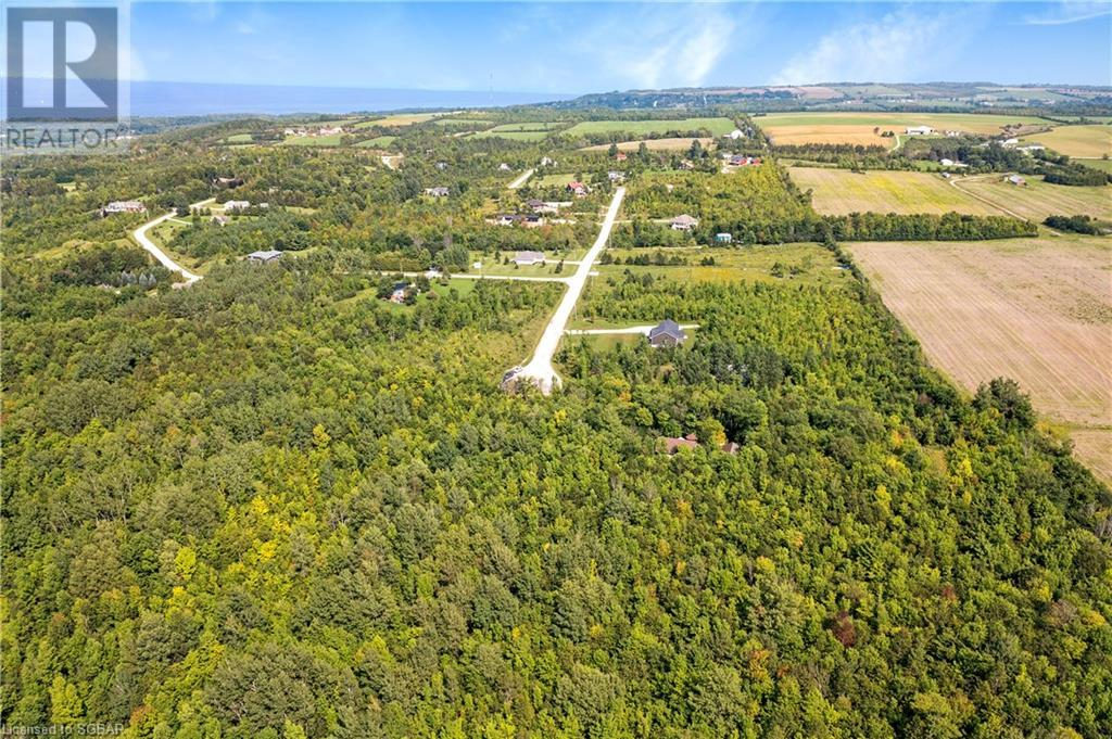 101 Robertson Avenue, Meaford (Municipality), Ontario  N4L 1W7 - Photo 46 - 40163127