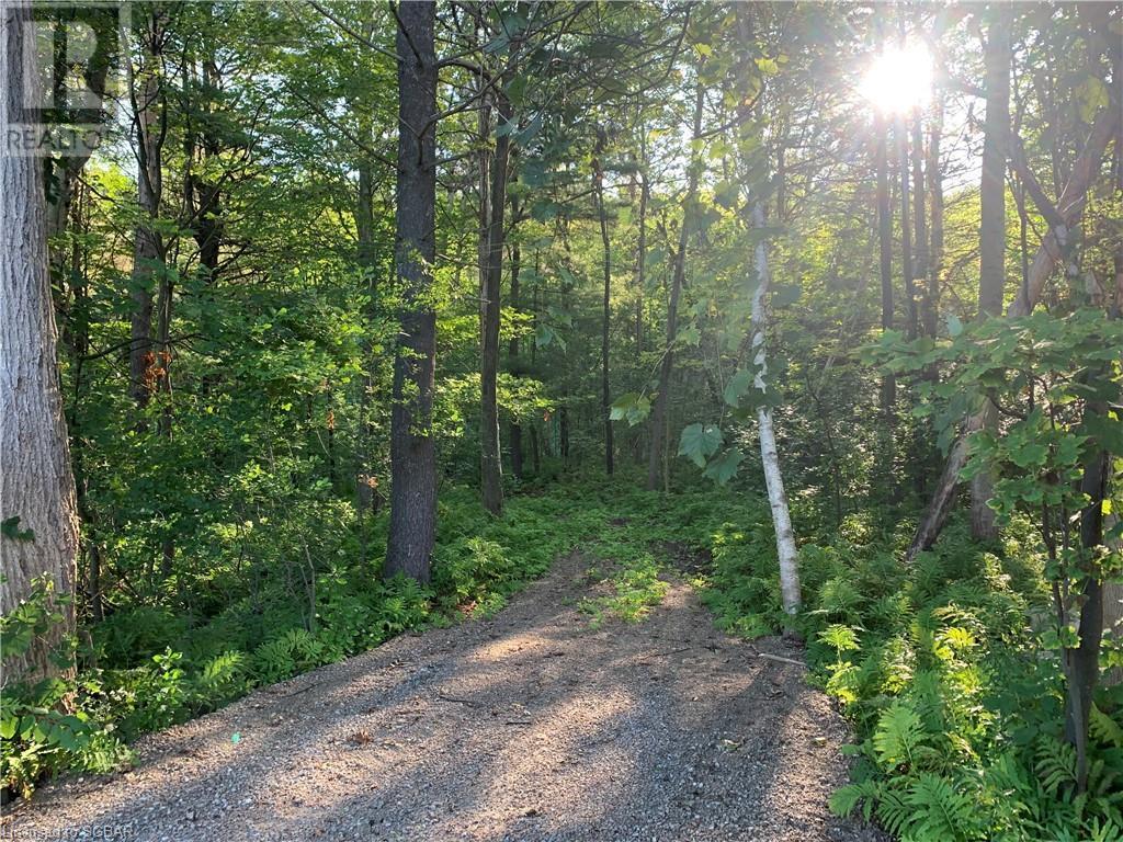 9743 93 County Road, Midland, Ontario  L4R 4L9 - Photo 1 - 40163682