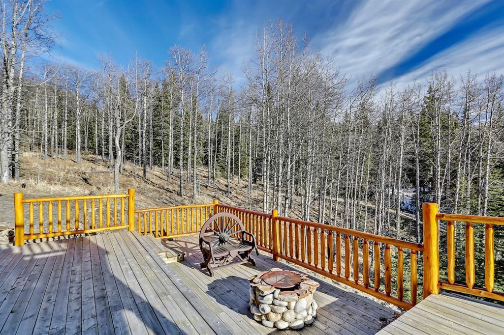 74196 Forestry Trunk Road, M.d. Of, Alberta  T4C 2B8 - Photo 30 - A1120244