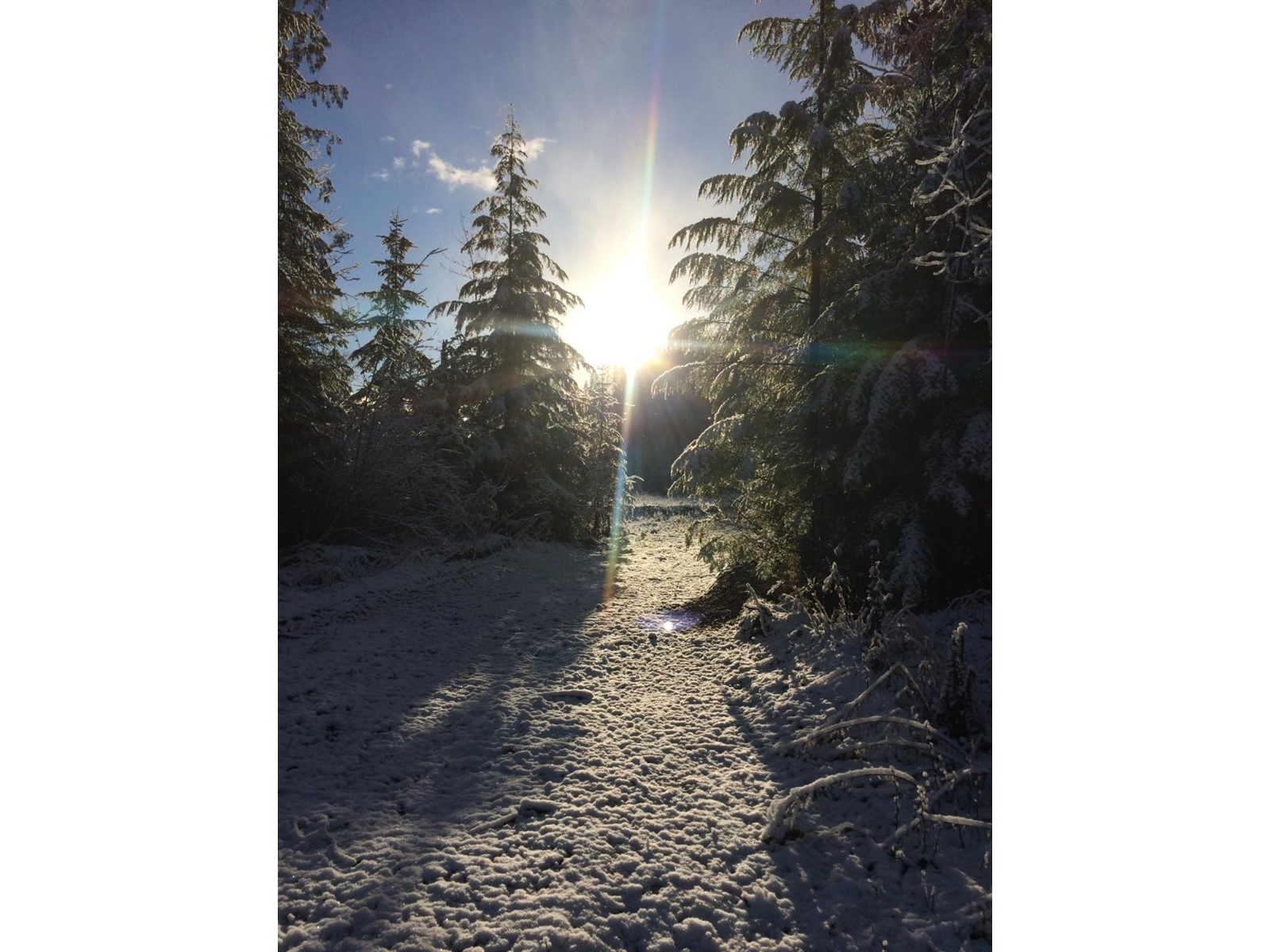 16622 Marquise Street, Poplar Creek, British Columbia  V0G 1N0 - Photo 16 - 2460723