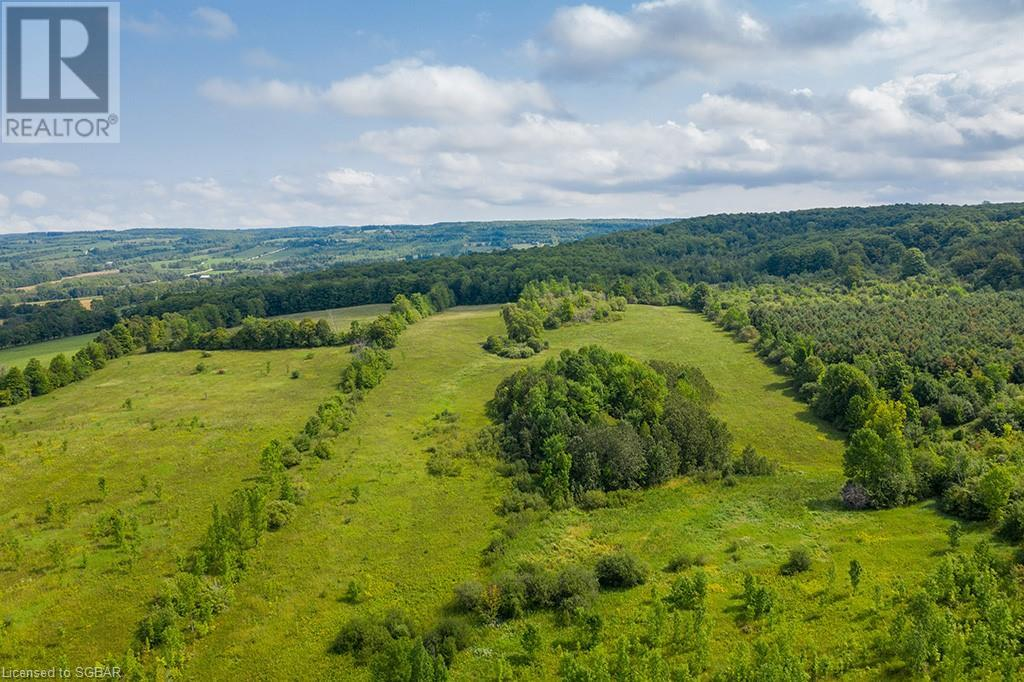 415763 10th Line, The Blue Mountains, Ontario  N0H 1J0 - Photo 43 - 40165051