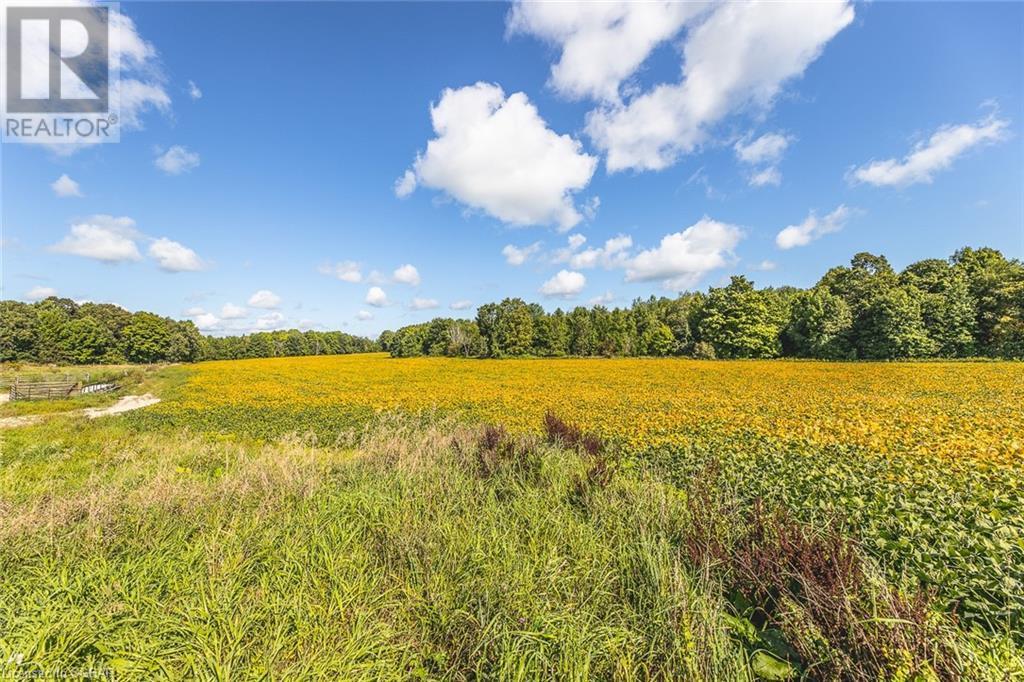 178841 17 Grey Road, Georgian Bluffs, Ontario  N4K 5N4 - Photo 26 - 40164946