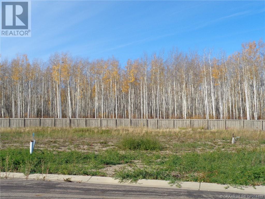 19 Bear Creek Drive, High Level, Alberta  T0H 1Z0 - Photo 1 - GP214489