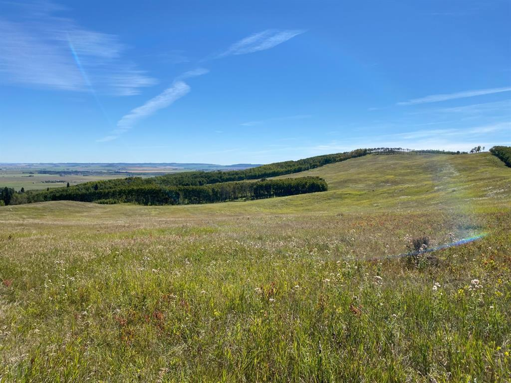 Highway 22, Rural Foothills County, Alberta  T0L 0H0 - Photo 28 - A1066885