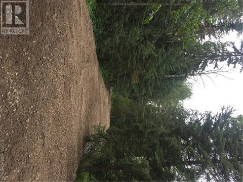 6 Ridgeland Road, Rural Clearwater County, Alberta  T4T 2A4 - Photo 4 - A1008126
