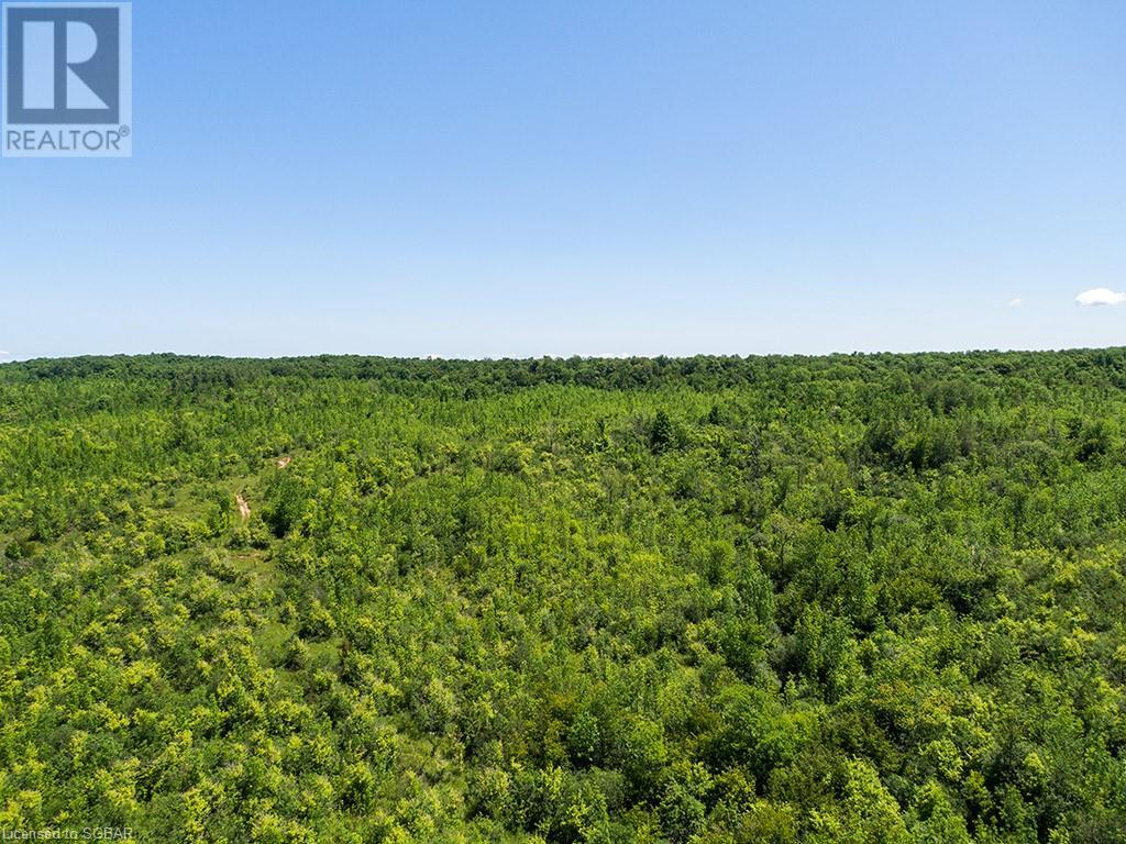 17-18 A Concession, Meaford (Municipality), Ontario  N0H 1B0 - Photo 10 - 40153173