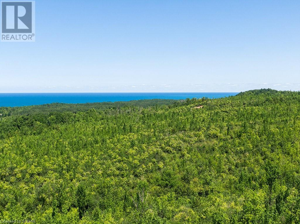 17-18 A Concession, Meaford (Municipality), Ontario  N0H 1B0 - Photo 8 - 40153173