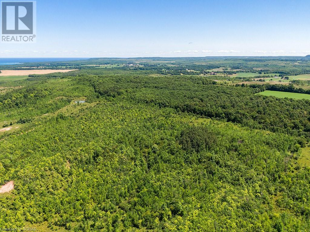 17-18 A Concession, Meaford (Municipality), Ontario  N0H 1B0 - Photo 17 - 40153173