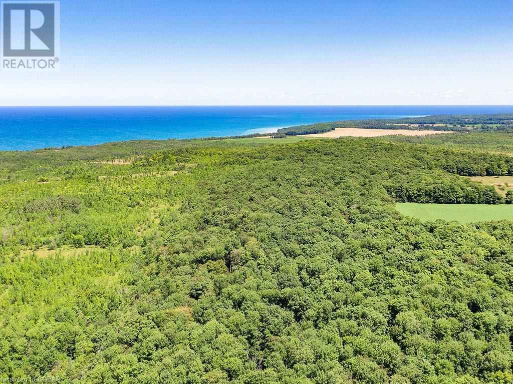 17-18 A Concession, Meaford (Municipality), Ontario  N0H 1B0 - Photo 5 - 40153173
