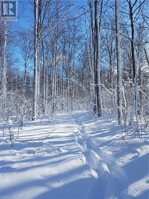 825215 40 Grey Road, Grey Highlands, Ontario  N0H 2S0 - Photo 23 - 40134114