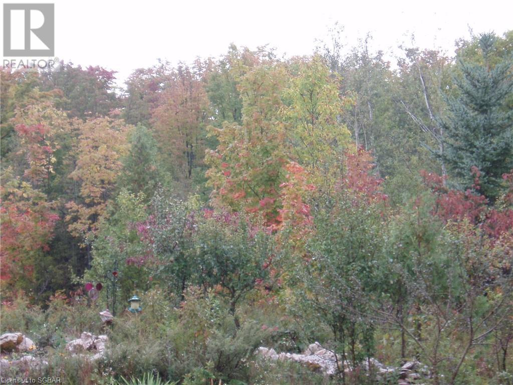 825215 40 Grey Road, Grey Highlands, Ontario  N0H 2S0 - Photo 27 - 40134114
