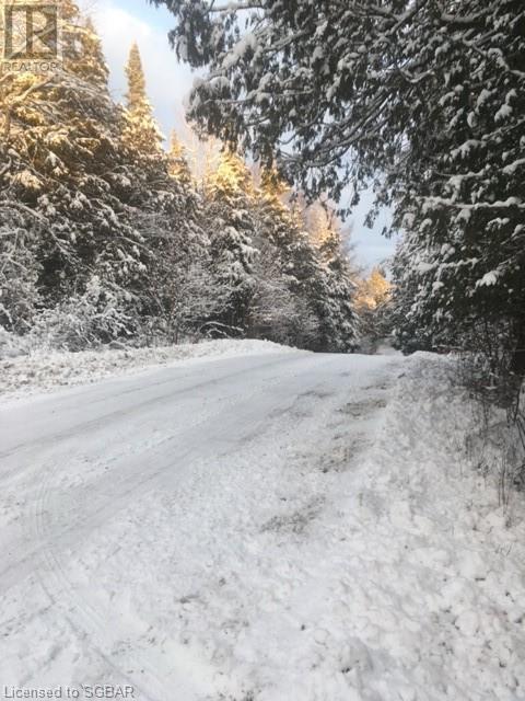 1393 Paynes Road, Haliburton, Ontario  K0L 2Y0 - Photo 12 - 40161651