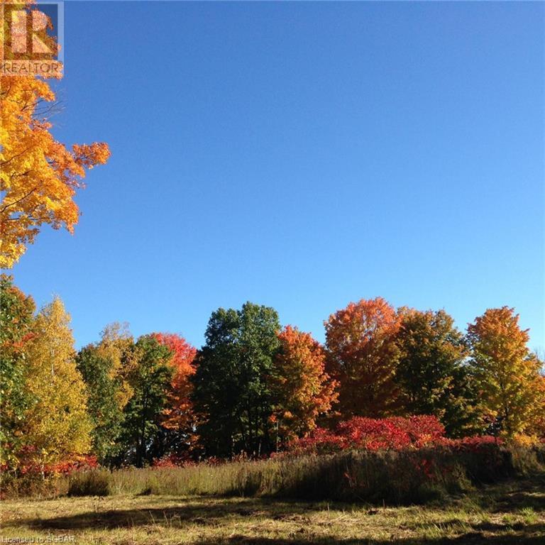 1614 Horseshoe Valley Road E, Oro-Medonte, Ontario  L0K 1E0 - Photo 11 - 40151319