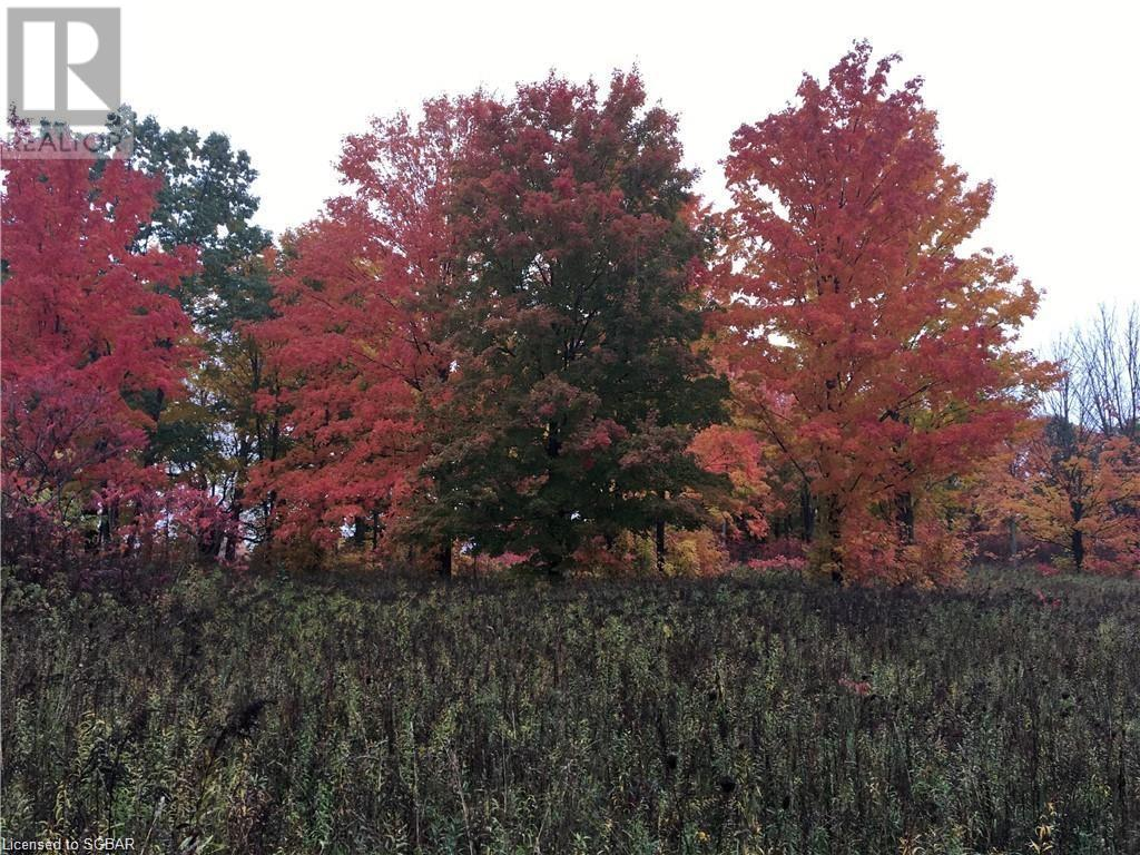 1614 Horseshoe Valley Road E, Oro-Medonte, Ontario  L0K 1E0 - Photo 9 - 40151319