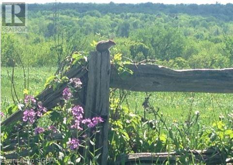 1614 Horseshoe Valley Road E, Oro-Medonte, Ontario  L0K 1E0 - Photo 14 - 40151319